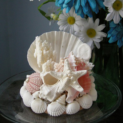 Композиции из морских ракушек