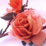Бумажные цветы Фрэнсис и Франциска
