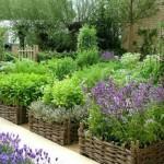 Грядки для овощей и трав