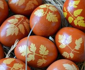 Окрашивание яиц луковой шелухой