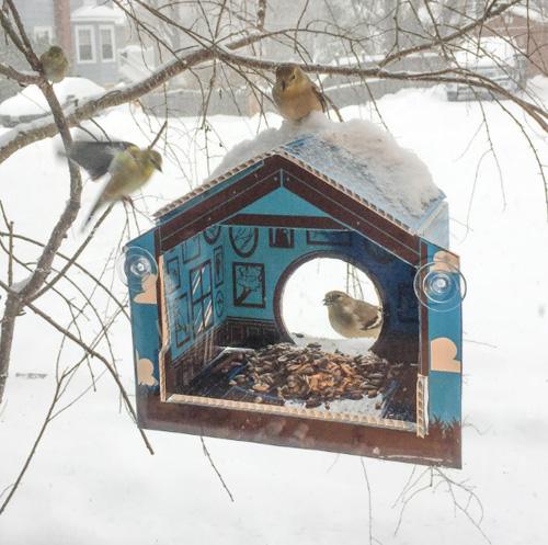 Миниатюрные птичьи домики