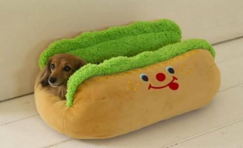 Хот дог для собаки