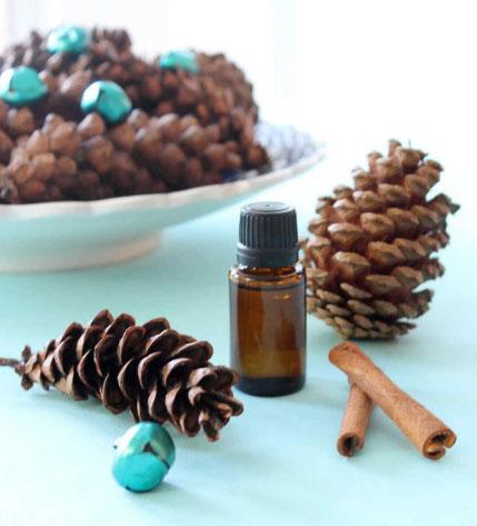 Как сделать ароматные сосновые шишки